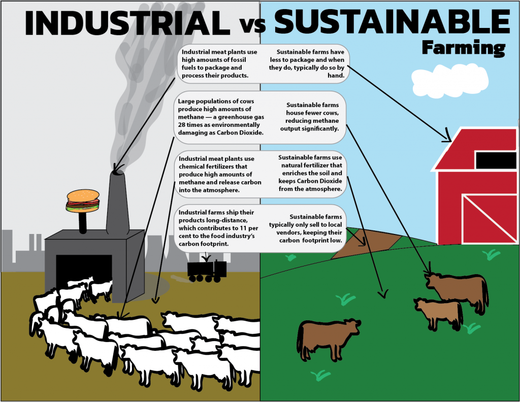 A infographic depicting the benefits of sustainable vs. industrial meat farming
