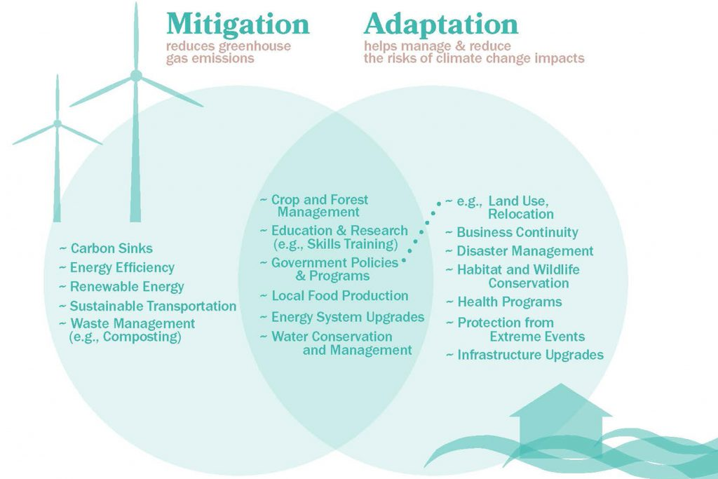Venn diagram of climate change adaptation and mitigation